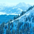 Winter misty mountain landscape — Stock Photo