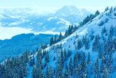 Winter misty mountain landscape — Foto Stock