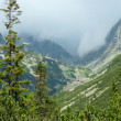 High Tatras (Slovakia) summer view. — Stock Photo