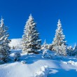 Stock Photo: Morning winter mountain landscape (Carpathian, Ukraine).