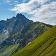 Summer Tatra Mountain, Poland — Stock fotografie
