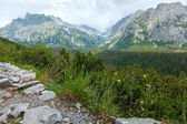 High Tatras (Slovakia) summer view. — Stock Photo