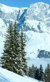 Pochmurny zimowy krajobraz górski — Zdjęcie stockowe