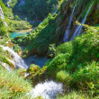 Waterfalls and grasses in Plitvice Lakes National Park (Croatia) — Stock fotografie