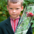 Portrait of nice little schoolboy — Stock Photo #36295963