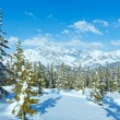 Winter mountain fir forest landscape ( Austria)) — Stock Photo
