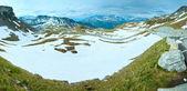 Panorama estivo delle Alpi — Foto Stock
