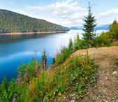 Alpine Lake Vidra summer view — Photo