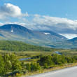Stock Photo: Norwegisummer road (near Dombas, Norge)