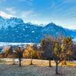 Winter mountain country landscape (Austria). — Stock Photo #38426003