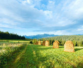 Vue de pays de montagne l'été — Photo