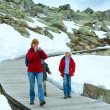 Family going on wooden flooring (Bettmerhorn, Switzerland). — Stock Photo