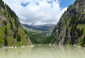 Summer mountain canyon and dam (Alps, Switzerland) — ストック写真