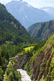 Summer mountain canyon (Alps, Switzerland) — 图库照片