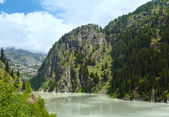 Summer mountain canyon and dam (Alps, Switzerland) — Stockfoto