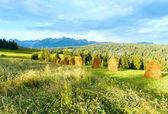 Vista di paese di montagna estate — Foto Stock