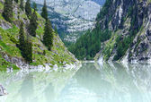 Summer mountain canyon and dam (Alps, Switzerland) — Foto Stock