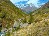 Summer Alps mountain — Stock Photo