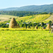 Stock Photo: Summer mountain rural view with haystacks (Carpathian, Ukraine)