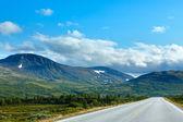 Norwegian summer road (near Dombas, Norge) — Stock Photo