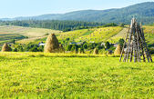 Summer mountain rural view with haystacks (Carpathian, Ukraine) — Stock Photo
