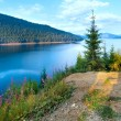 Alpine Lake Vidra summer view — Stock Photo