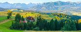 Summer mountain village panorama (Poland) — Stock fotografie