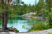 Summer mountain river (Norge) — Stock Photo