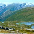 Summer mountain (Norway) — Stock Photo