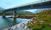 Norwegian Sea night view and bridge — Stock Photo
