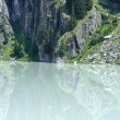 Summer mountain canyon and dam (Alps, Switzerland) — Stock Photo #41753203