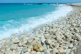 Lefkada coast summer beach (Greece) — Stock Photo