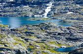 Summer rock (Norway) — Стоковое фото