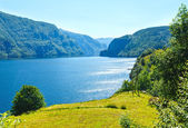 Sommaren mountain lake suldalsvatn (norge) — Stockfoto