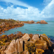 Ploumanach coast spring view (Brittany, France) — Stock Photo #45787159