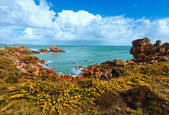Ploumanach coast spring view (Brittany, France) — Stock Photo
