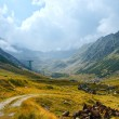 Summer mountain view (Romania) — Stock Photo