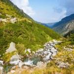 Summer mountain view (Romania) — Stock Photo #46742451