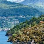 Lake Como (Italy) summer view. — Stock Photo #47011877