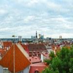 Tallinn City summer panorama. — Stock Photo #49415885