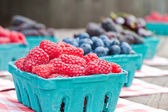 Fresh Berries — Stockfoto