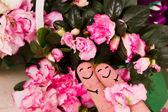 Valentine love — Stock Photo