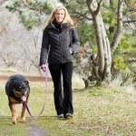 Woman walking the dog — Stock Photo #22198169