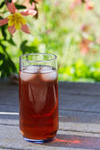 Back yard ice tea — Stock Photo