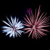 Celebrating with fireworks — Stock Photo