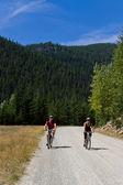 горный велосипед — Стоковое фото