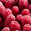 Frozen red raspberries — Stock Photo