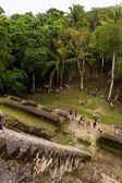 Lamanai Maya Temple — Stockfoto