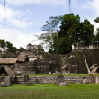 Tikal, Mayan Ruins — Stock Photo
