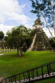 Great Jaguar Temple, Tikal, Guatemala — Stock Photo